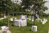 Banqueting and events: Vineyard meadow